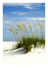 Photo of the beach near our Panama City Beach vacation rentals